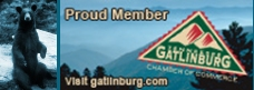 Visiting Gatlinburg? Make sure to consider Gatlinburg cabins and hotels for your stay.