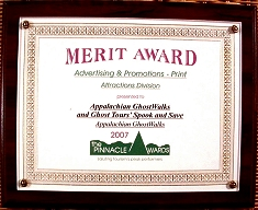 NETTA Pinnacle Award 2007